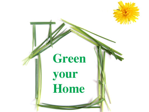 Green Your Home green living - ecologist guides - ecologist guide to greening your