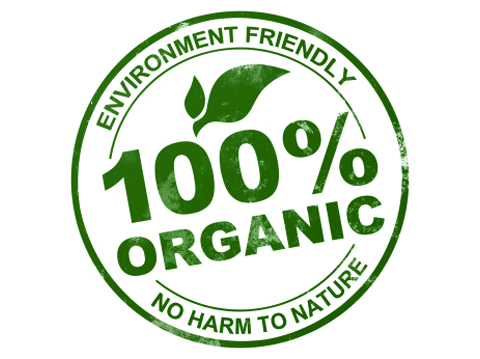 organic produce essays For example, local food initiatives often promote sustainable and organic farming practices, although these are not explicitly related to the geographic proximity of producer and consumer local food represents an alternative to the global food model, a model which often sees food traveling long distances before it reaches.