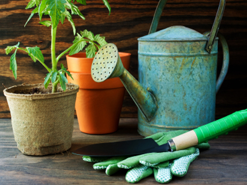 Five of the best green gardening accessories green for Garden accessories sale