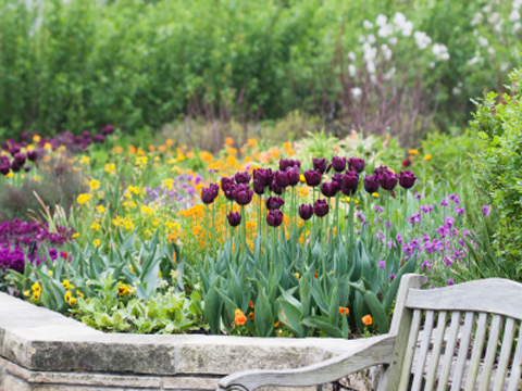How to build a raised flowerbed green living the ecologist - Best compost for flower pots solutions within reach ...