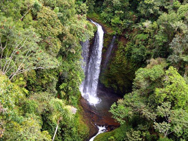Amazon Jungle Tours Iquitos