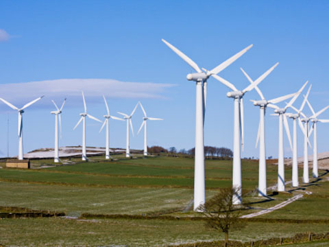A large wind farm