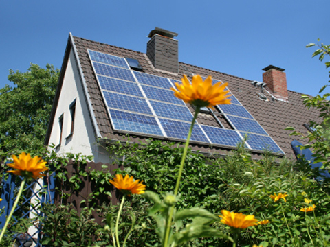 solar panels on roof, sunflowers in foreground
