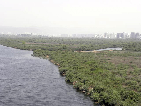 The proposed site of the new international airport in Mumbai