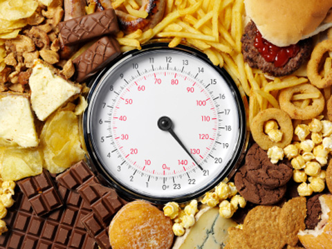 An obesogenic diet