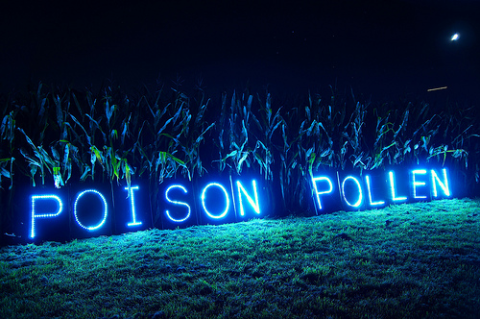 Cornfield message in support march against Monsanto, October 2013. Photo: Light Brigading via Flickr.com.