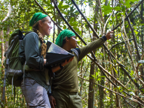 OuTrop researchers in the Sabangau Forest. Photo: Matt Adam Williams / OuTrop