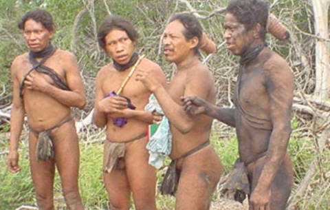 Ranching companies are intent on clearing the last forest refuge of the uncontacted Ayoreo tribe. Photo: © GAT / Survival.