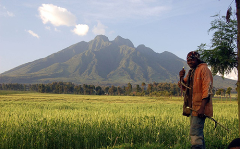 A farm near the Virunga mountains and National Park. Photo: John & Mel Kots via Flickr.com.