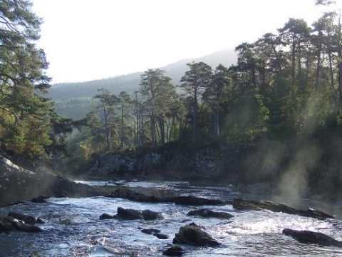 The River Moriston, near the Dundreggan Estate. Scots pine and other native trees grow along the river, but much of the glen is given over to commercial conifer plantation of low biodiversity value. Photo: Philip Mason.