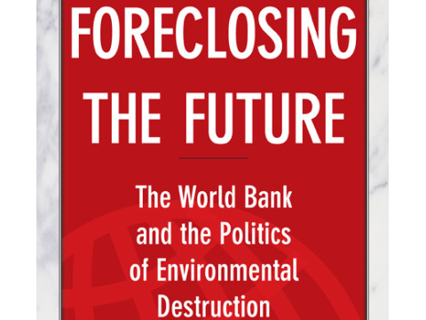 'Foreclosing the Future' by Bruce Rich book cover.