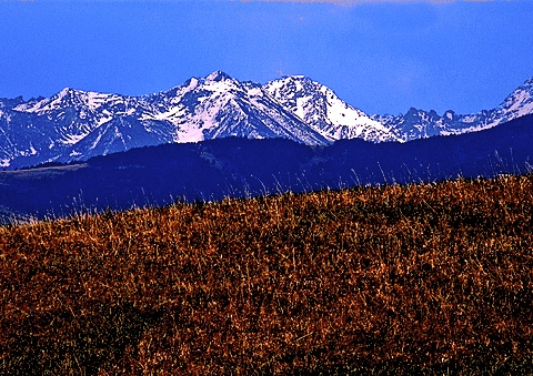 Bridger Mountains. Photo: Jeffrey St. Clair.