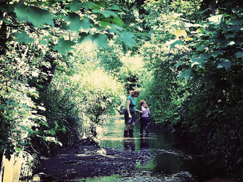 Kate and Flo knee deep in The Quaggy. Photo: Jon Nicholls (fotologic) via Flickr.com.