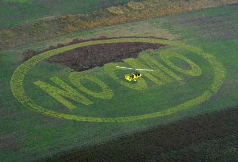 No GMO! Photo: www.gmofreeglobal.org/ .