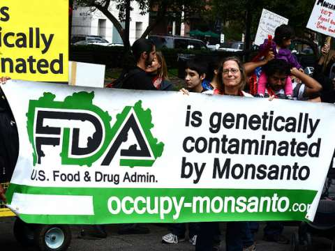 Marching against Monsanto in Washington DC. Photo: Stephen Melkisethian via Flickr.