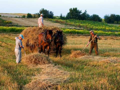 Farming in Poland, the traditional way. Photo: Jejma via Flickr.