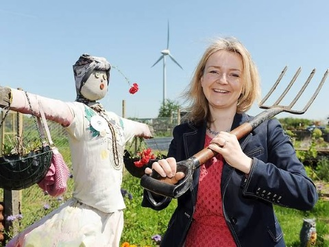 Liz Truss threatens a badger with a garden fork at the Family Action's Escape Allotment in Swaffham. Photo: Matthew Usher / edp24.co.uk/