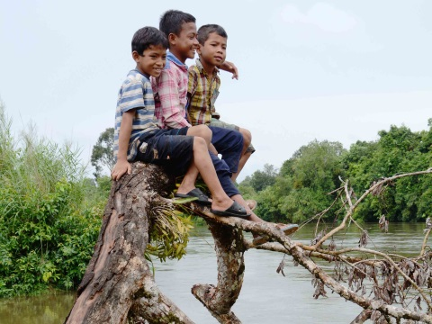 Chong boys playing up a tree by the Areng river. Photo: Rod Harbinson.