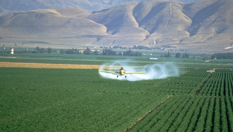 Crop-spraying in the USA. Photo: CFS.