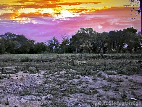 Drought under a torrid sky in Santa Fe, Argentina. Photo: Claudio.Ar via Flickr.