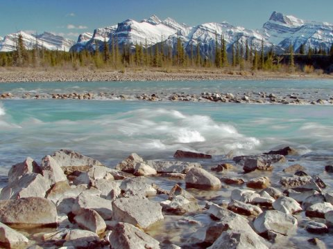 The North Saskatchewan River in the Kootenay Plains. Photo: Alan Ernst.