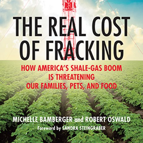 The Real Costs of Fracking - front cover.