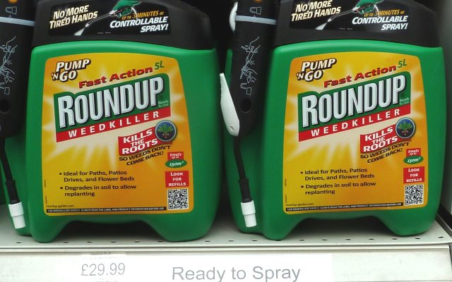 No, Monsanto's 'Roundup' glyphosate-based herbicide is not safe enough to drink. It's 'probably carcinogenic to humans' - and that's official! Photo: London Permaculture via Flickr (CC BY-NC-SA 2.0)