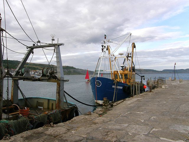 Small fishing boats at Lyme Regis, Dorset, where England's first big marine Protected Area was designated. Photo: Sue Hasker via Flickr (CC BY-ND).