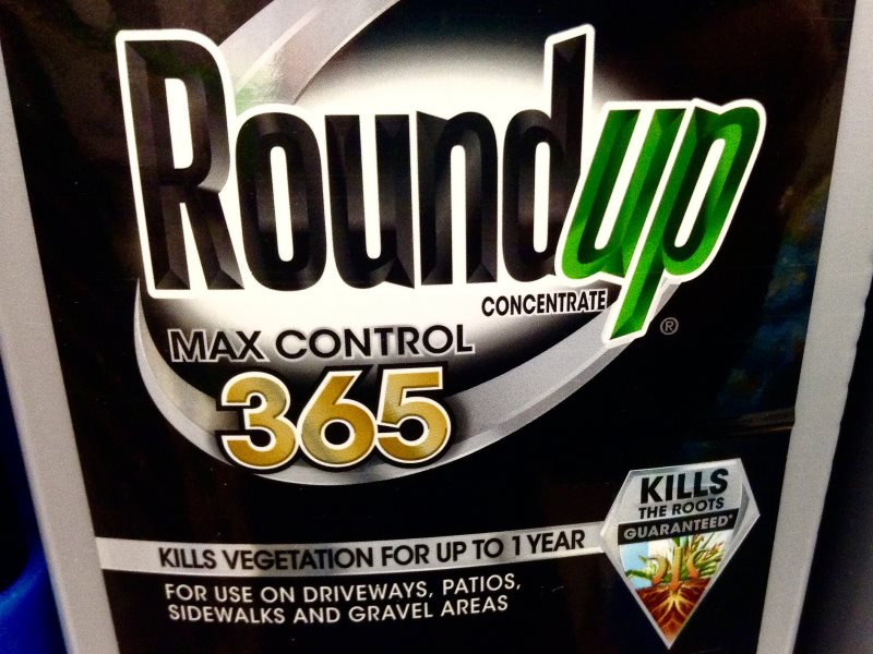It's toxic, and Monsanto knew it as long ago as 1981. Photo: Mike Mozart via Flickr (CC BY).