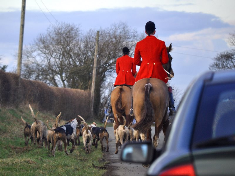 The South Shropshire hunt out on a public road. Photo: League Agaisnt Cruel Sports.