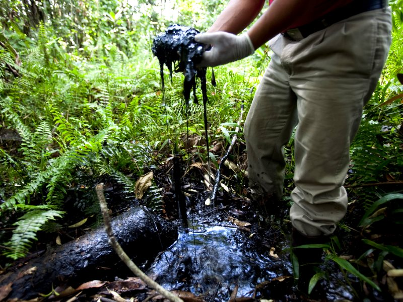 Crude oil in an open toxic oil waste pit abandoned by Texaco / Chevron in the Ecuadorean Amazon Rainforest near Lago Agrio. Photo: Caroline Bennett / Rainforest Action Network via Flickr (CC BY-NC).