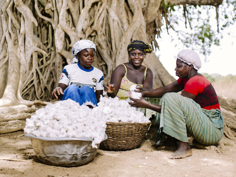 Women in Zorro village, Burkina Faso, desseding their cotton. But what chance have they got in global commodity markets that are systematically rigged against them? Photo: CIFOR via Flickr (CC BY-NC).