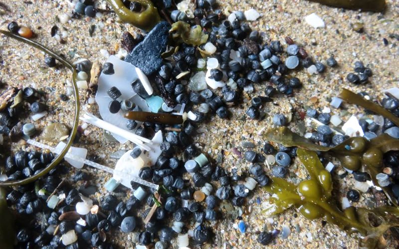 Nurdles found on the beach near Newquay in recent weeks. Photo: Tracey Williams / Rame Peninsula Beach Care.