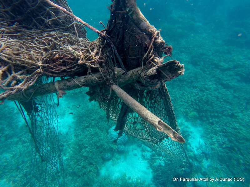 A bamboo-net FAD on Farquhar Atoll, Seychelles. Photo: ICS.