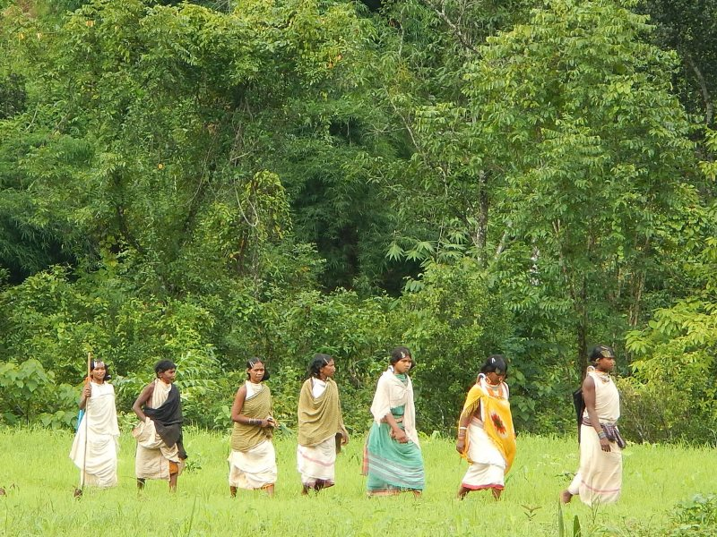 Women of the Dongria Kondh tribe make their way to a gram sabha hearing to determine their religious rights over the Niyamgiri mountain in Odisha, 13th August 2013. Photo: jimanish via Flickr (CC BY-NC-SA).