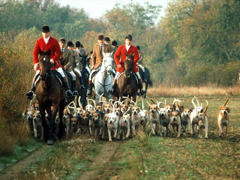 Dressed to kill ... the Essex Hunt. Photo: League Against Cruel Sports.
