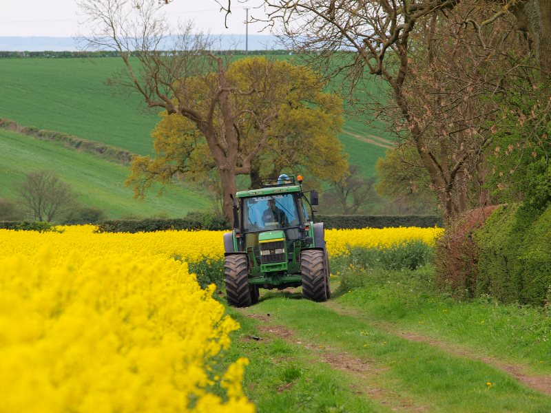 A farmer at work on his tractor amid oilseed rape (canola) in Oakwood, Derbyshire, England. Photo: John Bennett via Flickr (CC BY-NC-SA).