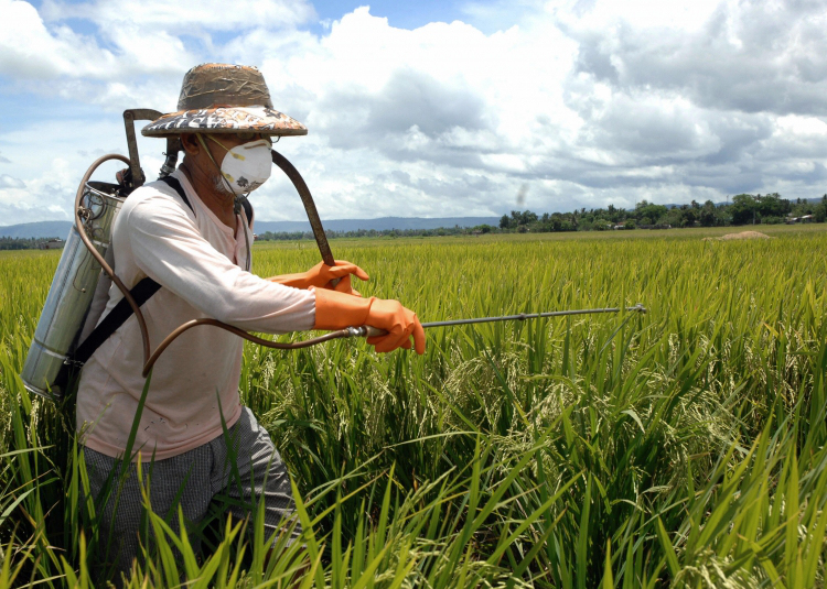 Farmer spraying a field using a backpack and protective equipment. Photo: Day Donaldson via Flickr (CC BY 2.0)