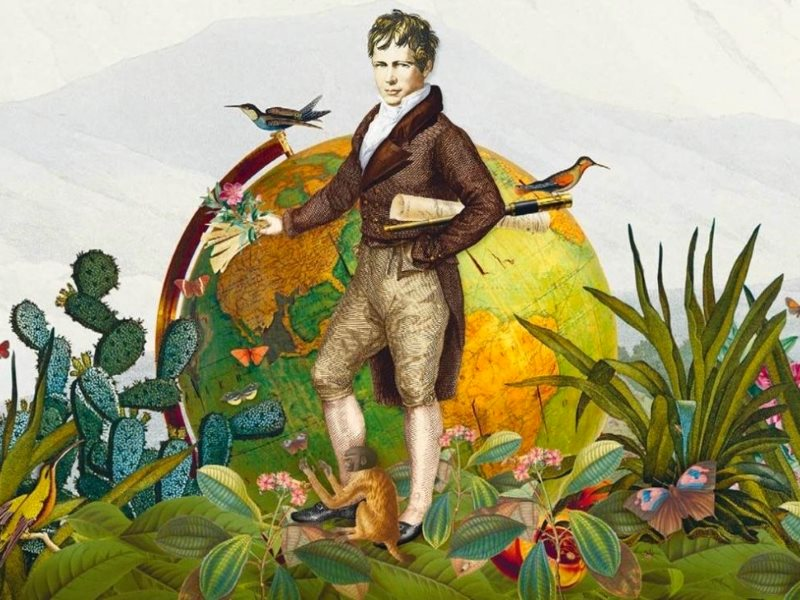 Contemporary illustration of Alexander von Humboldt - used in the cover of 'The Invention of Nature'.