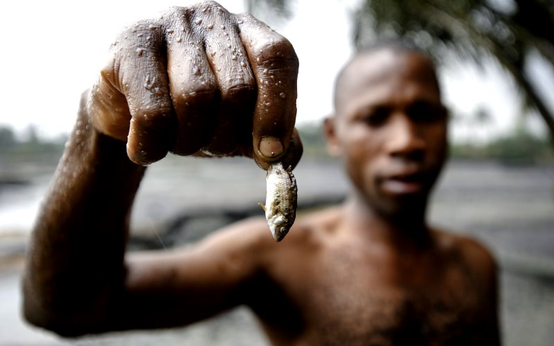 What was left for the Nigerian people after the corrupt oil deal? Ogoniland fisherman showing the effect of Shell's oil pollution in a local creek. Photo: Milieudefensie via Flickr (CC BY-NC-SA).