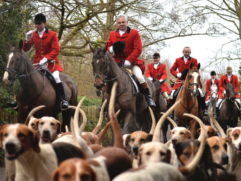 Boxing Day Hunt and Hounds in Chiddingstone, Kent, England. Photo: Kentish Plumber via Flickr (CC BY-NC-ND).