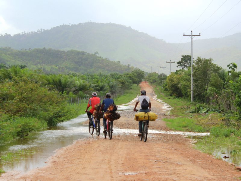 A dirt road near Dinant Corporation's El Tumbador plantation, Honduras, where the corporation is locked into a deadly land war with local campesino communities. Photo: ICIJ via Flickr (CC BY-NC-ND).