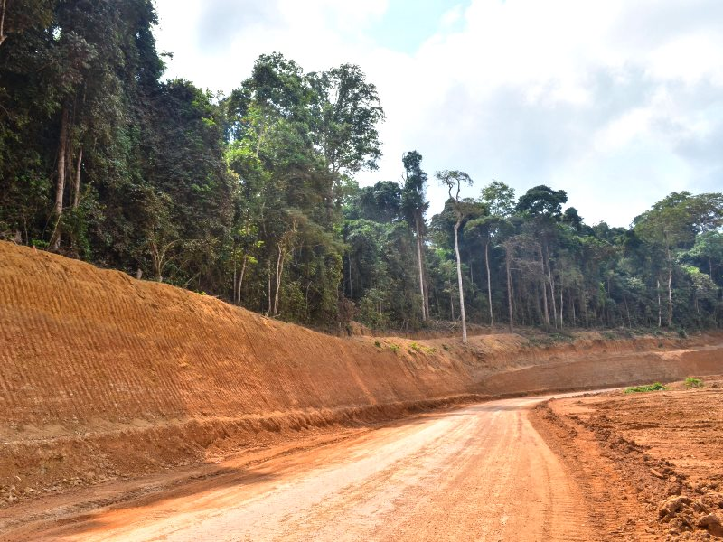 Chinese-built road under construction through rainforest in Mouloundou Department, Ogooue-Lolo, Gabon. Photo: jbdodane via Flickr (CC BY-NC).