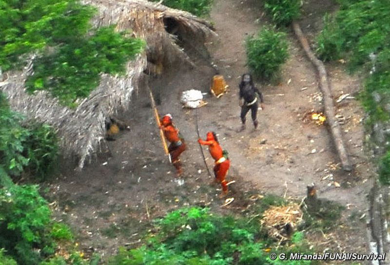 Seen here in 2008, this uncontacted indigenous community in Brazil's Amazon may be fierce in defence of its lands. But they don't stand a chance in the face of bulldozers, chainsaws, automatic weapons, and the new diseases brought by loggers, miners and f