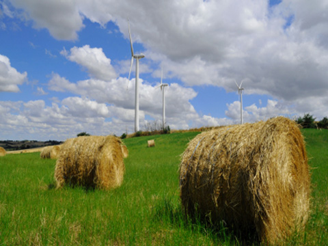 A wind turbine on argicultural land