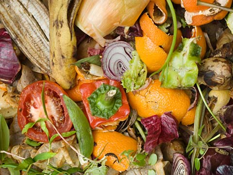 Food waste: valuable stuff
