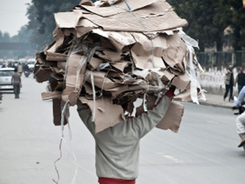 Scavenger carrying waste