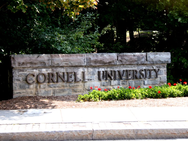 Here lie the bones of academic freedom and scientific objectivity. Cornell University, Ithaca, NY. Photo: Katrina Koger via Flickr (CC BY-NC-ND).