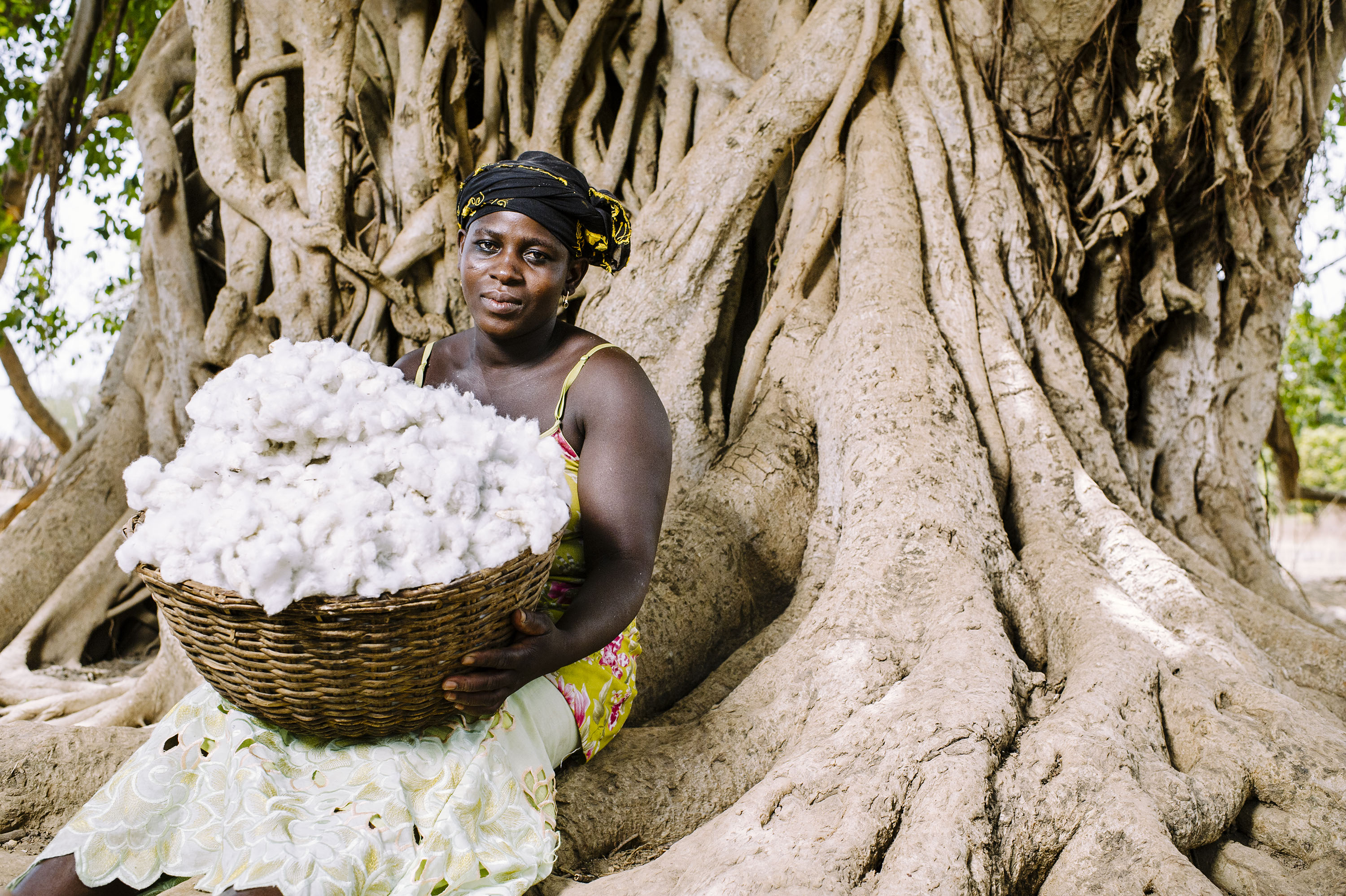 Dadjan Wassinatou, 34, holds a basket of freshly harvested cotton in the village of Zorro, Burkina Faso. Photo: CIFOR via Flickr (CC BY-NC).