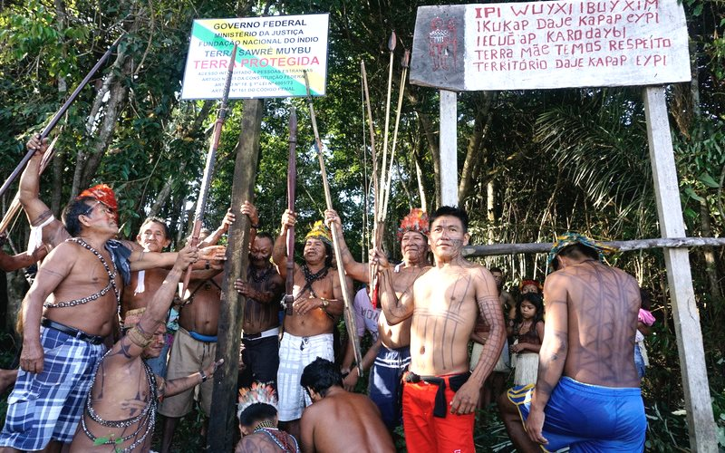 Munduruku indigenous people set up a sign to demarcate their land. Photo: Greenpeace.